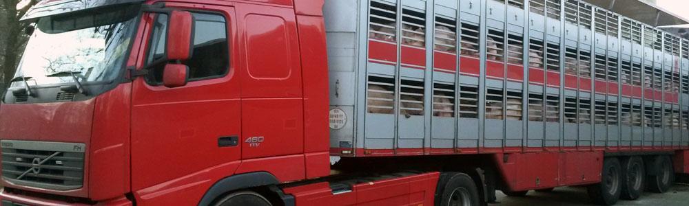 header-vrachtwagen.jpg