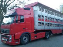 transport-20140204_081546.jpg